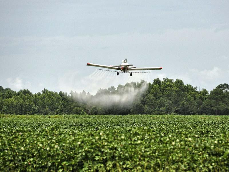 pesticides usage en agriculture