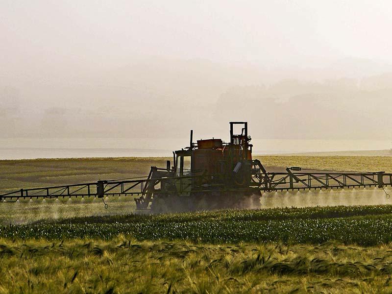 usage massif de pesticides
