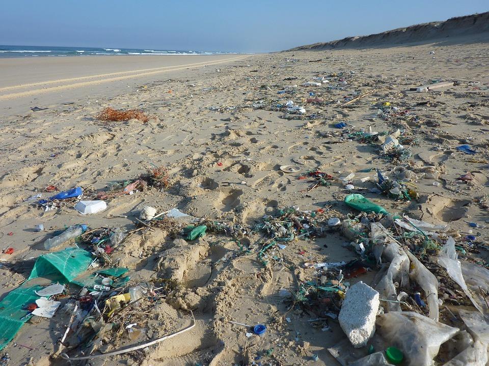 microplastiques-danger