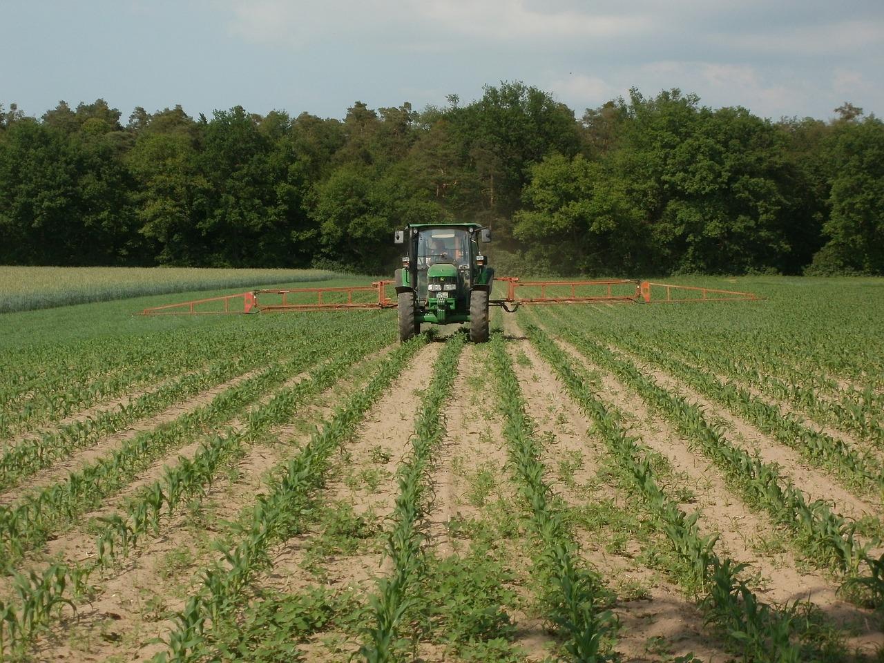 monoculture-agriculture-france