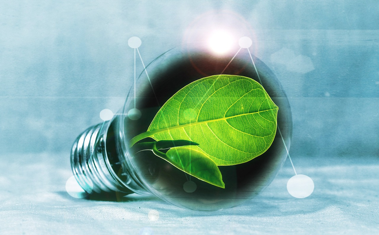Does The Green Economy Create Jobs Ompe Organisation Mondiale