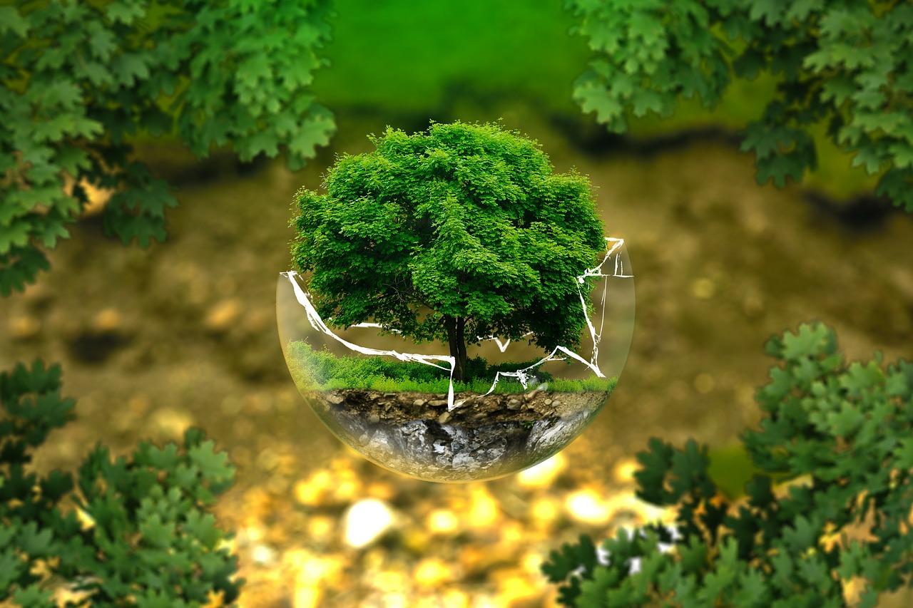 mesures-environnement