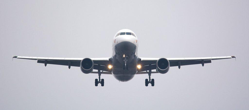 avion-sauts-de-puce
