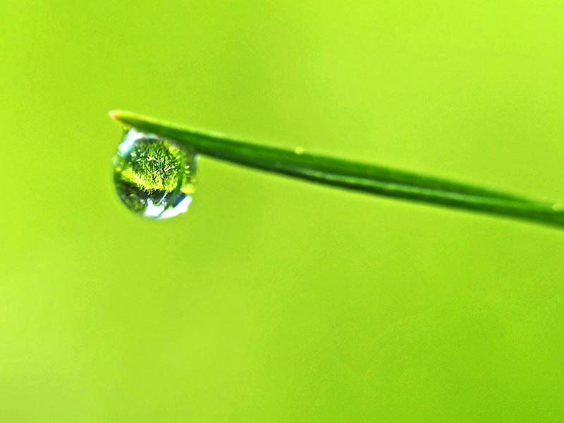 sauver l'eau douce
