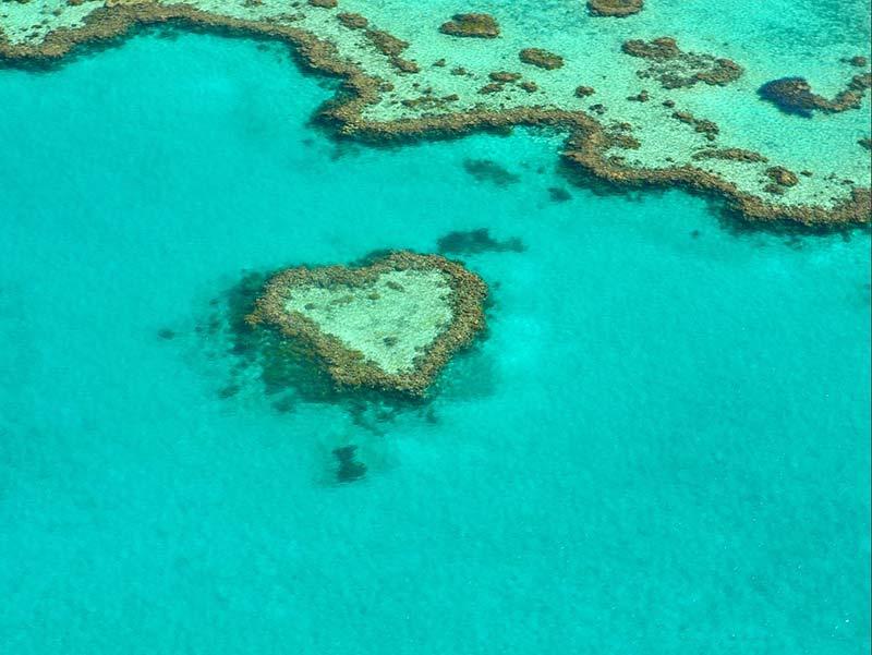 lutte contre la pollution des océans