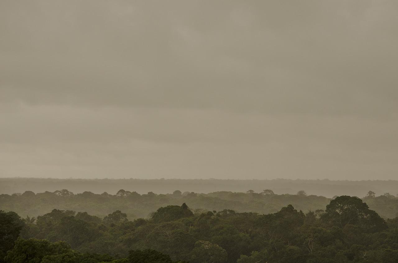 amazonie-deforestation-ompe