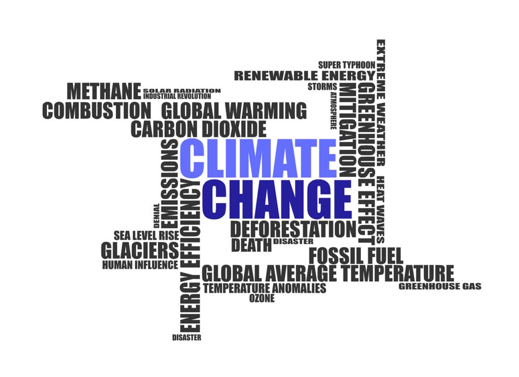 urgence-climatique-declaree