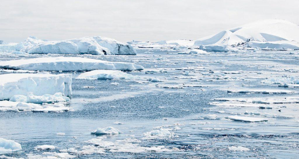 vague-de-chaleur-arctique